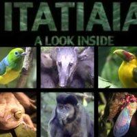 Itatiaia, Visto Por Dentro